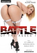 Battle of the Asses 7.jpg