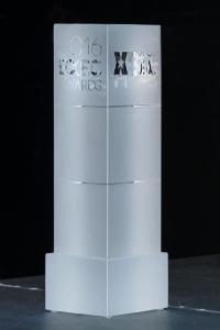 XBIZ Executive Award.jpg