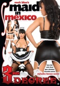 Maid in Mexico.jpg